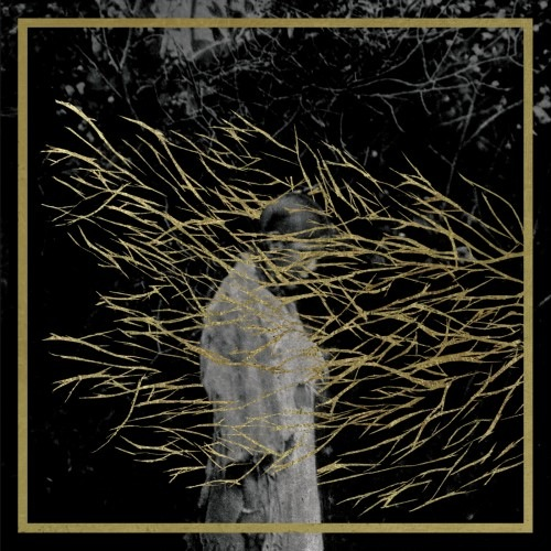 forest_swords