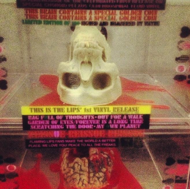 flaming lips_skull