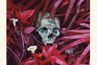 The Vinyl Factory presents Richard Mosse&#8217;s <em>The Enclave</em>