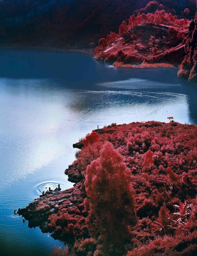 Lac Vert_Richard Mosse