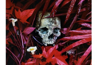 Ben Frost &#038; Richard Mosse release <em>The Enclave</em> as limited edition vinyl