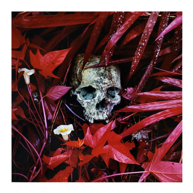 ben-frost-richard-mosse-release-the-enclave-as-limited-edition-vinyl