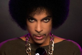 Prince went record shopping just days before his death