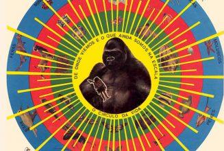 Pedro Santos&#8217; psychedelic Brazilian masterpiece <em>Krishnanda</em> reissued on vinyl