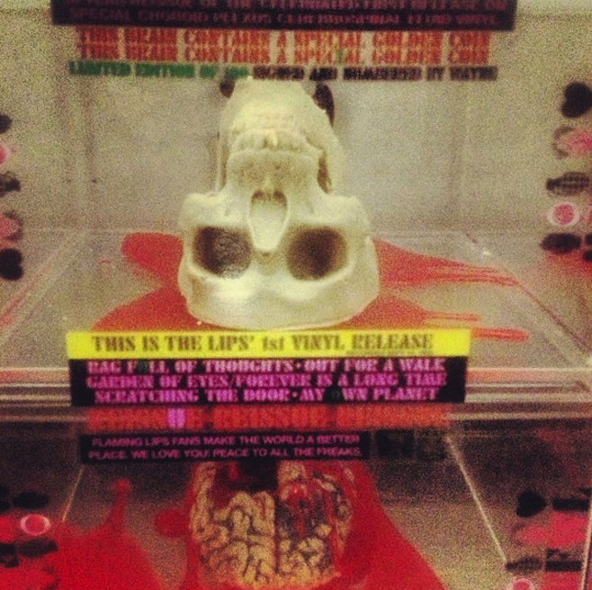 flaming lips_skull