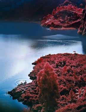 Lac Vert_Richard Mosse copy