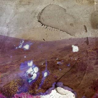 Dartmoor-still copy