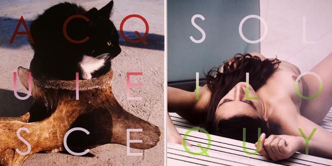 album2 copy